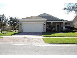 11323 Bridge Pine Drive, Riverview, FL 33569 (MLS #T2865978) :: The Duncan Duo & Associates
