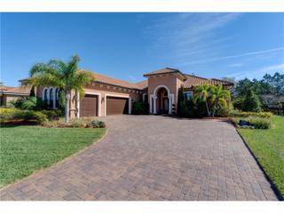 1014 Stella Vara Drive, Lutz, FL 33548 (MLS #T2866317) :: The Duncan Duo & Associates