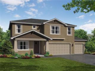 712 Kingsfield Reserve Avenue, Brandon, FL 33511 (MLS #T2866729) :: The Duncan Duo & Associates
