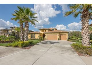 3232 Cordoba Ranch Boulevard, Lutz, FL 33559 (MLS #T2867476) :: The Duncan Duo & Associates