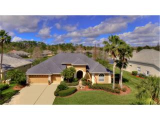 10559 Greencrest Drive, Tampa, FL 33626 (MLS #T2867499) :: The Duncan Duo & Associates