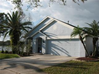 9923 Bridgeton Drive, Tampa, FL 33626 (MLS #T2867529) :: The Duncan Duo & Associates