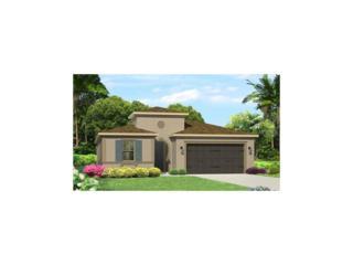 3508 Wicket Field Road, Lutz, FL 33548 (MLS #T2867663) :: The Duncan Duo & Associates