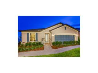 5006 Wabash Place, Riverview, FL 33578 (MLS #T2867679) :: The Duncan Duo & Associates