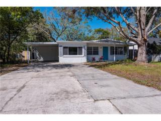 4323 S Cameron Avenue, Tampa, FL 33611 (MLS #T2868262) :: The Duncan Duo & Associates