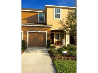 6812 Holly Heath Drive, Riverview, FL 33578 (MLS #T2868404) :: The Duncan Duo & Associates