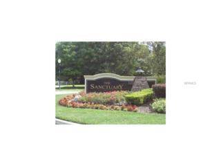 3312 Chase Jackson Branch, Lutz, FL 33559 (MLS #T2868425) :: The Duncan Duo & Associates