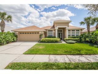 10229 Millport Drive, Tampa, FL 33626 (MLS #T2868531) :: The Duncan Duo & Associates