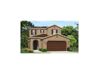 29180 Perilli Place, Wesley Chapel, FL 33543 (MLS #T2868543) :: The Duncan Duo & Associates