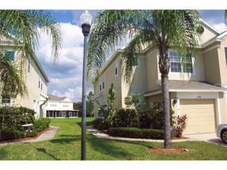 2745 Conch Hollow Drive, Brandon, FL 33511 (MLS #T2868574) :: The Duncan Duo & Associates