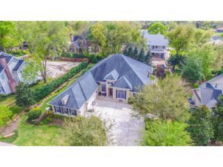 29516 Chapel Park Drive, Wesley Chapel, FL 33543 (MLS #T2868726) :: The Duncan Duo & Associates