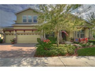 15517 Starling Crossing Drive, Lithia, FL 33547 (MLS #T2868808) :: The Duncan Duo & Associates