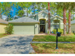 11847 Derbyshire Drive, Tampa, FL 33626 (MLS #T2869046) :: The Duncan Duo & Associates