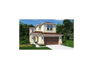 29172 Perilli Place, Wesley Chapel, FL 33543 (MLS #T2870018) :: The Duncan Duo & Associates