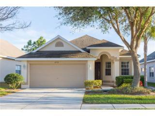 30732 Pumpkin Ridge Drive, Wesley Chapel, FL 33543 (MLS #T2870472) :: The Duncan Duo & Associates