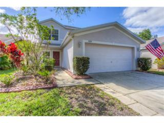 5839 Wrenwater Drive, Lithia, FL 33547 (MLS #T2870522) :: The Duncan Duo & Associates