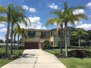 17918 Howsmoor Place, Lutz, FL 33559 (MLS #T2870720) :: The Duncan Duo & Associates