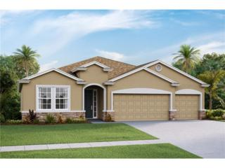 32357 Pinson Lane, Wesley Chapel, FL 33543 (MLS #T2870755) :: The Duncan Duo & Associates