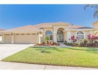 11903 Keating Drive, Tampa, FL 33626 (MLS #T2870792) :: The Duncan Duo & Associates