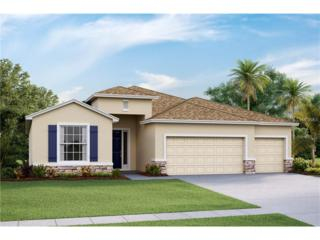 32371 Pinson Lane, Wesley Chapel, FL 33543 (MLS #T2870813) :: The Duncan Duo & Associates