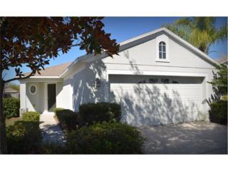 12619 Ocelot Place, Riverview, FL 33579 (MLS #T2871104) :: The Duncan Duo & Associates