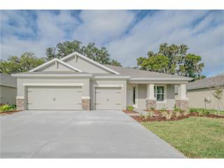 6401 Sparkling Way, Wesley Chapel, FL 33545 (MLS #T2871330) :: The Duncan Duo & Associates