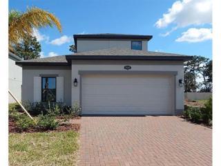 19400 Roseate Drive, Lutz, FL 33558 (MLS #T2871555) :: The Duncan Duo & Associates