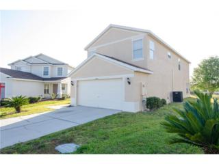 11203 Cocoa Beach Drive, Riverview, FL 33569 (MLS #T2871657) :: The Duncan Duo & Associates