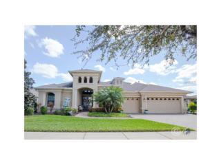 16324 Palmettoglen Court, Lithia, FL 33547 (MLS #T2871665) :: The Duncan Duo & Associates