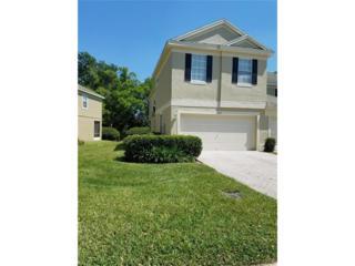 2631 Chelsea Manor Boulevard, Brandon, FL 33510 (MLS #T2871692) :: The Duncan Duo & Associates