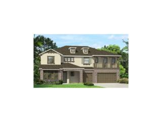 3121 Cordoba Ranch Boulevard, Lutz, FL 33559 (MLS #T2871827) :: The Duncan Duo & Associates