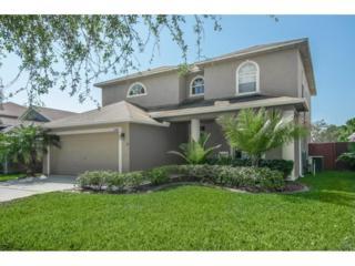 12762 Standbridge Drive, Riverview, FL 33579 (MLS #T2872008) :: The Duncan Duo & Associates