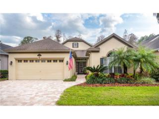 9501 Greenpointe Drive, Tampa, FL 33626 (MLS #T2872179) :: The Duncan Duo & Associates