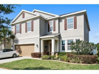 11535 Tangle Stone Drive, Gibsonton, FL 33534 (MLS #T2872264) :: The Duncan Duo & Associates