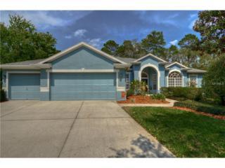 15218 Kestrelrise Drive, Lithia, FL 33547 (MLS #T2872368) :: The Duncan Duo & Associates