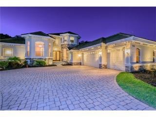 17516 Corsino Drive, Lutz, FL 33548 (MLS #T2872745) :: The Duncan Duo & Associates