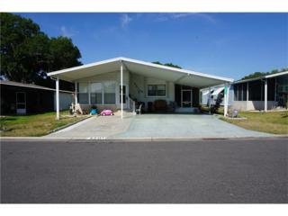 3201 Hickory Drive, Wesley Chapel, FL 33543 (MLS #T2872900) :: The Duncan Duo & Associates