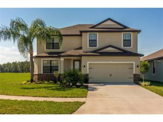 11849 Thicket Wood Drive, Riverview, FL 33579 (MLS #T2872940) :: The Duncan Duo & Associates