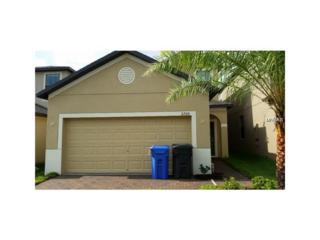 2720 Garden Falls Drive, Brandon, FL 33511 (MLS #T2873754) :: The Duncan Duo & Associates
