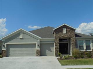 6456 Doe Path Court Drive, Wesley Chapel, FL 33545 (MLS #T2873854) :: The Duncan Duo & Associates