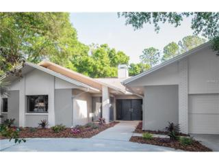 14209 Clarendon Drive, Tampa, FL 33624 (MLS #T2874058) :: The Duncan Duo & Associates