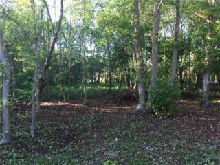 12606 Lake Hills Drive, Riverview, FL 33569 (MLS #T2874067) :: The Duncan Duo & Associates