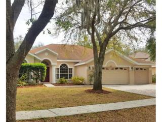 15205 Merlinpark Place, Lithia, FL 33547 (MLS #T2874090) :: The Duncan Duo & Associates