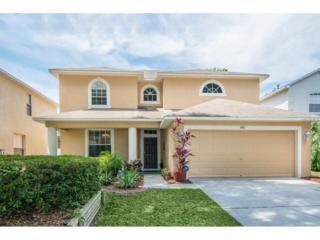 3411 Gray Whetstone Street, Brandon, FL 33511 (MLS #T2874330) :: The Duncan Duo & Associates