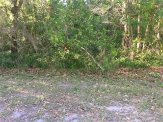 Lot 15 Lake Hills Drive, Riverview, FL 33569 (MLS #T2874345) :: The Duncan Duo & Associates