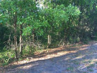 Lot 16 Lake Hills Drive, Riverview, FL 33569 (MLS #T2874359) :: The Duncan Duo & Associates