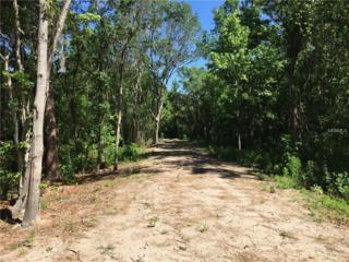 Lot 17 Lake Hills Drive, Riverview, FL 33569 (MLS #T2874375) :: The Duncan Duo & Associates