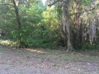 Lot 18 Lake Hills Drive, Riverview, FL 33569 (MLS #T2874395) :: The Duncan Duo & Associates