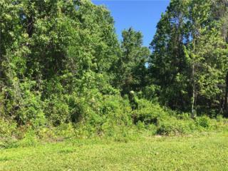 Lot 19 Lake Hills Drive, Riverview, FL 33569 (MLS #T2874403) :: The Duncan Duo & Associates