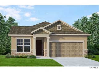 13911 Kingfisher Glen Drive, Lithia, FL 33547 (MLS #T2874472) :: The Duncan Duo & Associates